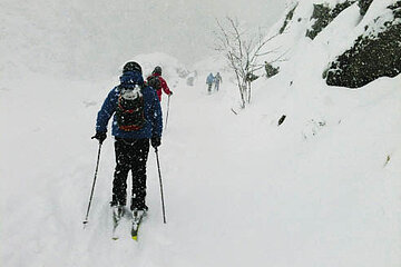 freeride-8_opt.jpg